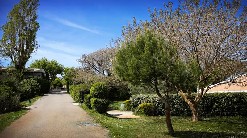 4 ha de parc